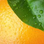 Sve što treba da znate o vitaminu C